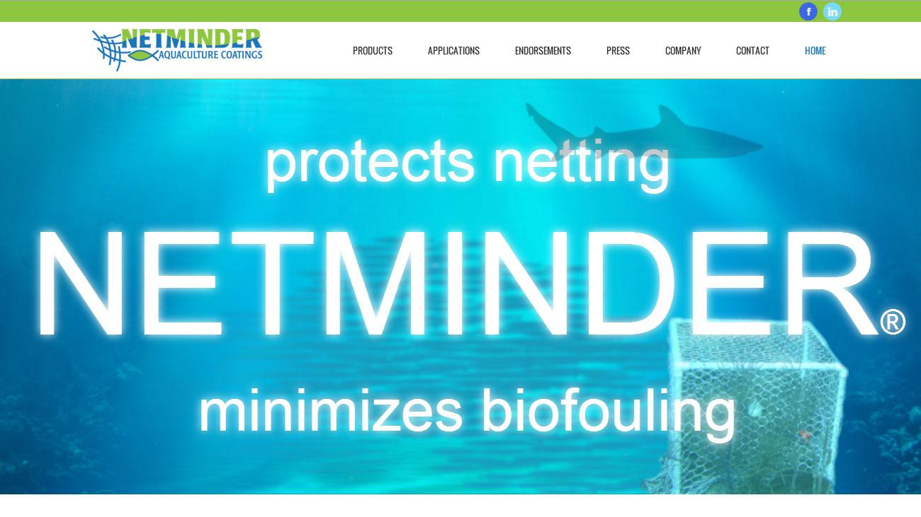 Portfolio Netminder webiste website design
