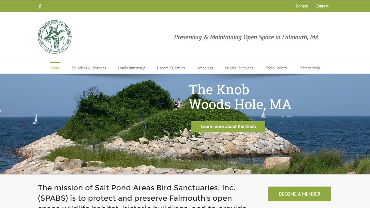 Portfolio Salt Pond website design